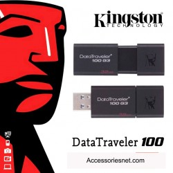 Kingston Data Traveller